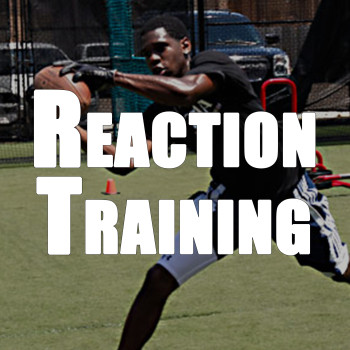 Reaction Sports Training